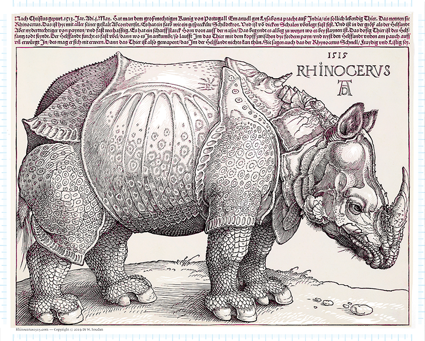 Albrecht Dürer's Rhinocerus from 1515. Visualization of the advanced image analysis procedures that were involved in the digital reconstruction.